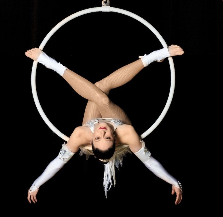 Image Result For Aerial Hoop Moves Book