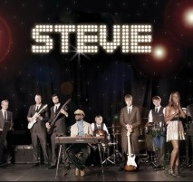 Stevie Wonder - Stevie Wonder Tribute