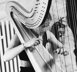 The North East Harpist