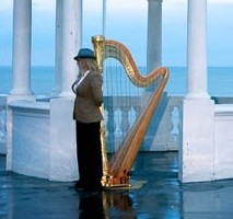The Sussex Harpist
