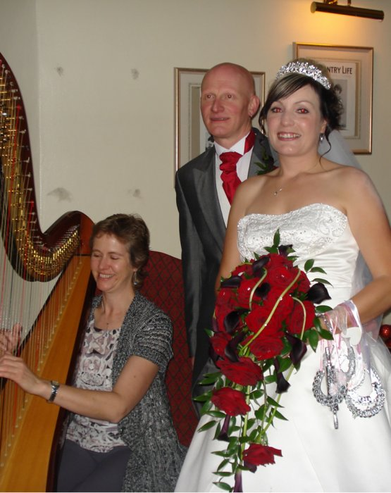 The Worcestershire Harpist Gallery
