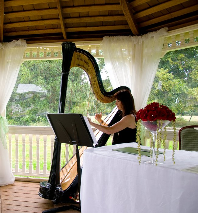 The Cheshire Wedding Harpist Gallery