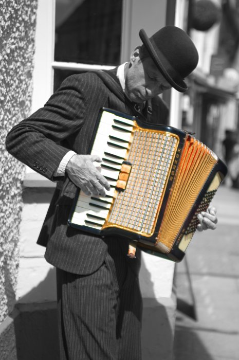 The Accordion Player Gallery
