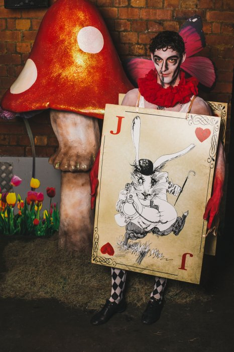 Alice In Wonderland Characters Gallery