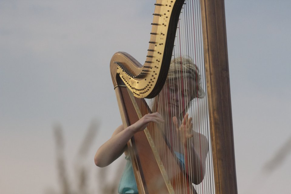 The South West Harpist Gallery