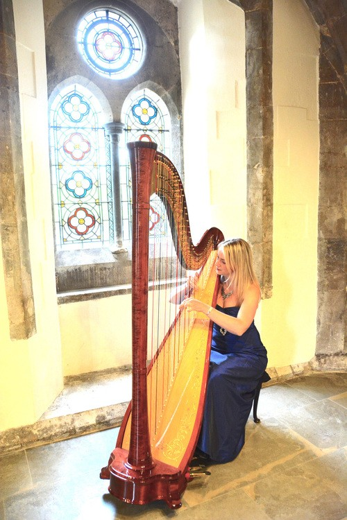 Siona the Somerset Harpist Gallery