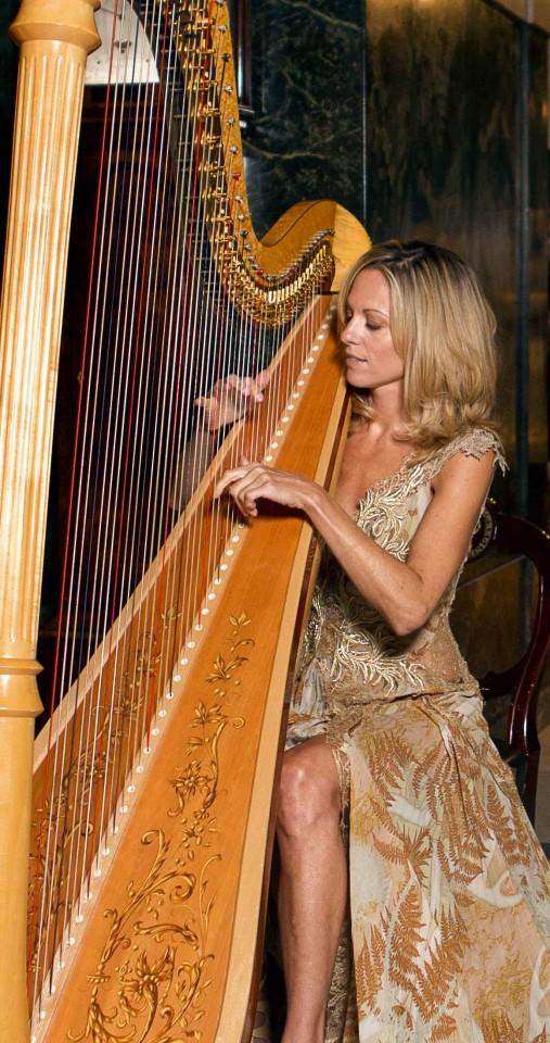 Siobhan The London Harpist Gallery