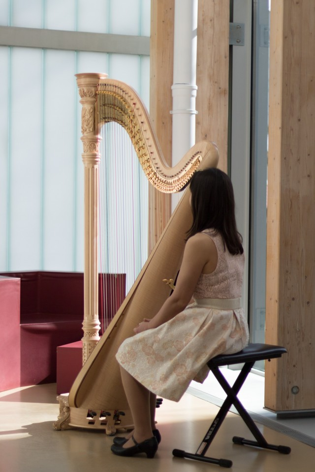The Azure Harpist Gallery