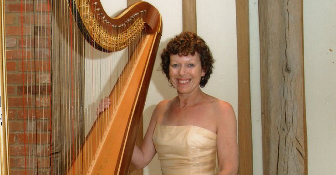 The Hampshire Harpist