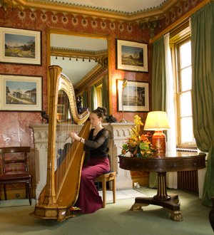 The East Sussex Harpist Gallery