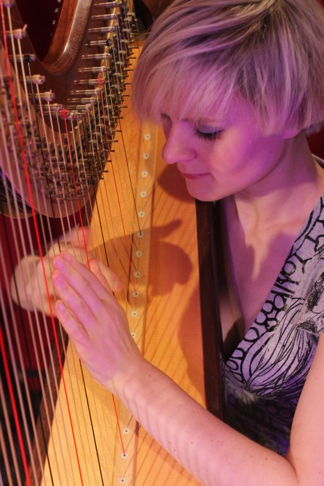 The West Sussex Harpist Gallery