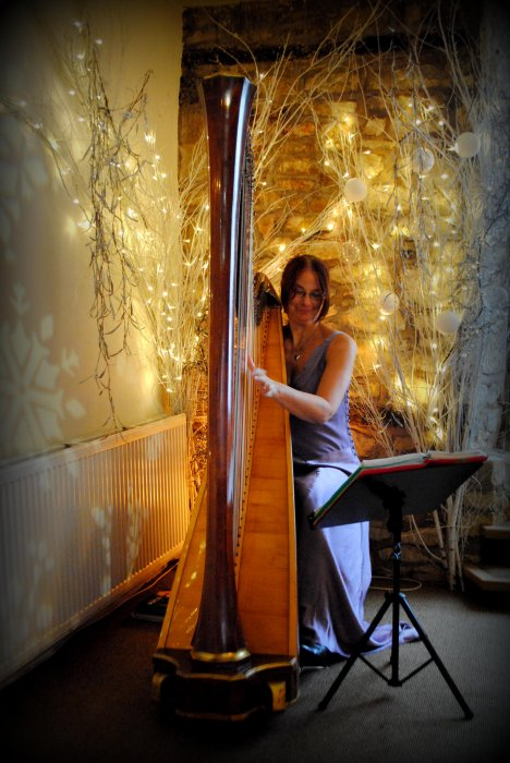 The Gloucestershire Harpist Gallery