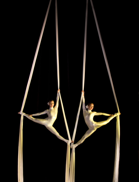 The Dynamic Silks Duo Gallery