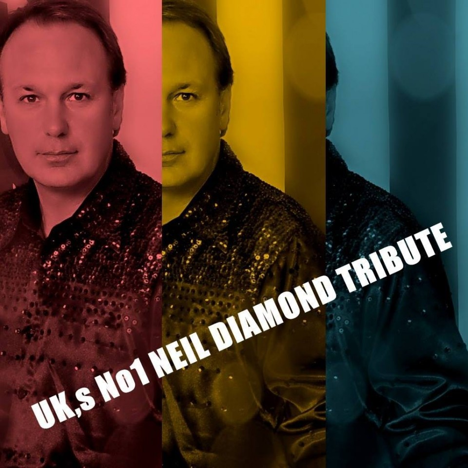 Neil Diamond - Nearly Diamond Gallery